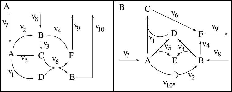 Metabolic balancing example. A. Original network.B. Steady-state-equivalent network. In both cases, with flux measurements of v 7=2, v 9=2 and v 10=1 (units arbitrary), it follows that v 1=1, v 4=1, v 6=1, v 8=1, while v 2, v 3 and v 5 cannot be determined (beyond the constraints that v 2=v 3=1-v 5)