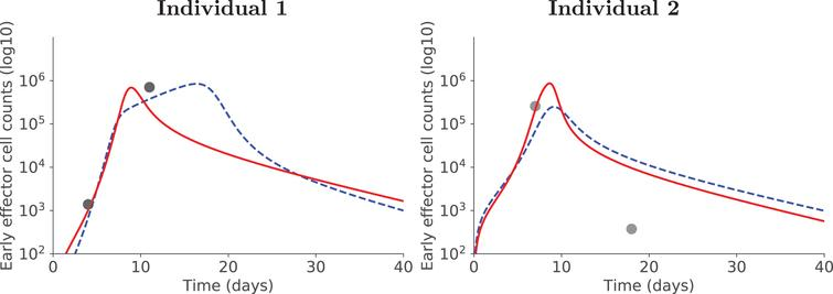 Positive side-effect of using covariates. For two illustrative individuals, accounting for covariates allows to better estimate early effector cell dynamics: red plain curve with covariate, blue dashed curve without covariate.