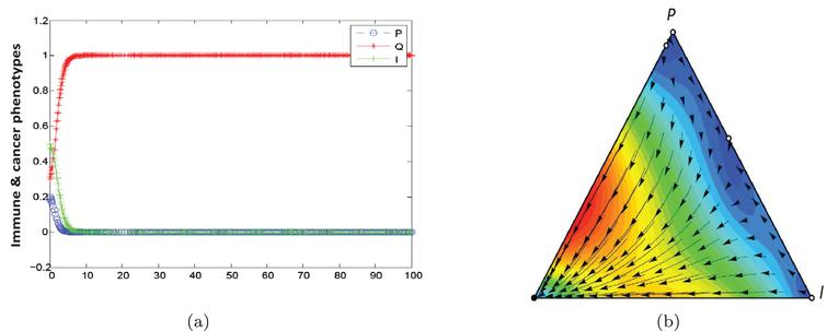 Population dynamic in the equilibrium phase.The parameters characterising this game are a, b=1, α=0.1, β=0.9, F2=1.5, F1=0.5, γ2=0, γ1=0.2, C2=0, C1=0.2.