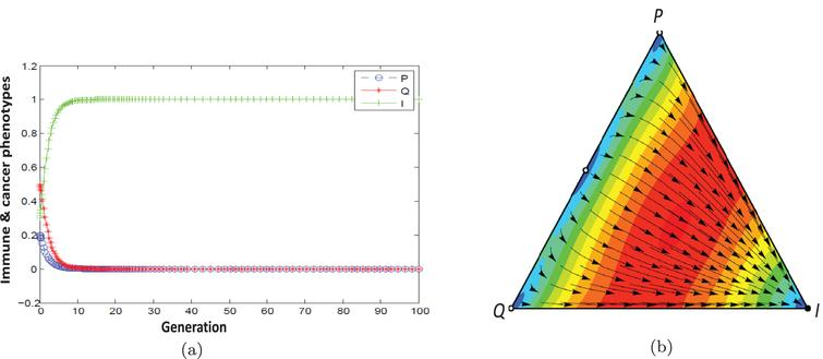Population dynamic in the elimination phase. The parameters characterising this game are α=0.5, β=0.5, F1=0.5, F2=0.5, γ2=1, γ1=1, C1=1, C2=1.
