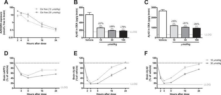 Time- and dose-dependent inhibition of Aβ generation in guinea pig brain after a single oral AZD3293 dose. Free brain AZD3293 concentration (Cbr free) peaked around 2 h after a single administration of AZD3293 (A). Dose-dependent reductions in Aβ40 and Aβ42 were observed at 2 h after administration (10, 30, or 100μmol/kg) (B and C for Aβ40 and Aβ42, respectively). The time-dependent reduction in brain sAβPPβ reached maximum effect at around 8 h after dosing and, after a small increase, appeared to be almost stable for up to 24 h after the single administration (D). The time-dependent reductions in Aβ40 (E) and Aβ42 (F) reached maximum effect between 4 and 8 h after dosing, and concentrations appeared to have returned to baseline at 24 h for the lower dose. Data are presented as Mean±SEM ( *p <  0.05;  **p <  0.01,  ***p <  0.001, compared with vehicle). Lower limit of quantification (LLOQ).