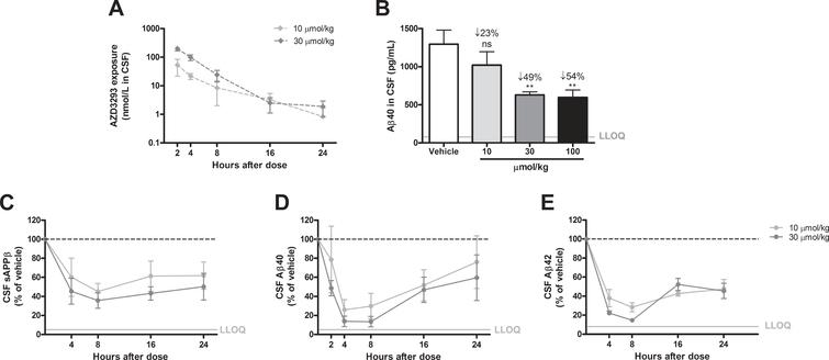 Time- and dose-dependent inhibition of CSF Aβ in guinea pigs after a single administration of AZD3293. Maximum CSF AZD3293 concentration was observed at 2 h after dosing (A). Dose-dependent reduction of Aβ40 was studied at 2 h after a single administration of AZD3293, with the 2 highest doses (30 and 100μmol/kg) resulting in significant effect (B). Maximum effect on CSF sAβPPβ was observed at around 8 h after the dose, and the effect was sustained for up to 24 h (C). CSF Aβ40 (D) and Aβ42 (E) displayed maximum concentrations between 4 and 8 h after AZD3293 administration. CSF Aβ40 appeared to have returned to baseline at 24 h. Data are presented as Mean±SEM ( *p <  0.05;  **p <  0.01,  ***p <  0.001, compared with vehicle). Lower limit of quantification(LLOQ).