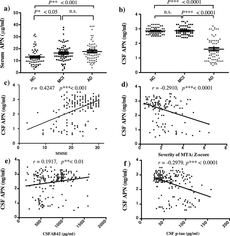 ELISAs of serum and CSF adiponectin (APN) in patients with MCI and AD and normal controls (NC). a) Serum APN was significantly higher in MCI and AD compared to NC (*p<0.05, **p<0.001). b) In contrast, CSF APN was statistically lower in AD compared to MCI and NC (***p<0.0001). c–f) CSF APN levels were positively correlated with MMSE scores (r=0.4247, p<0.001) (c) and CSF Aβ42 levels (r=0.1917, p<0.01) (e), and negatively correlated with severity of medial temporal lobe atrophy (MTA) (r=–0.2910, p<0.0001) (d) and CSF phosphorylated tau (p-tau) levels (r=–0.2979, p<0.0001) f). These results suggest that a decreased CSF APN level may be associated with changes in CSF biomarkers for AD: Decreased CSF Aβ42 and increased CSF p-tau, and brain atrophy. There were no correlations between serum APN and AD biomarkers (data not shown). n.s., not significant.