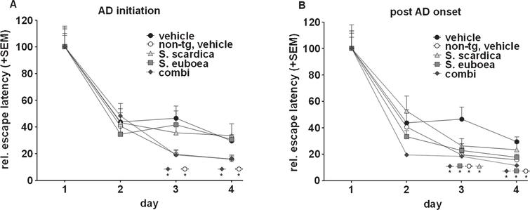 Sideritis spp. extracts improve memory performance in APP-tg mice. A) AD initiation treatment with the Sideritis spp. extract combination improves retentiveness and learning aptitude as shown by the significantly reduced escape latencies compared to vehicle treated APP-tg mice that are similar to vehicle-treated, non-transgenic mice. B) Decreased escape latency values of mice treated post-AD-onset with Sideritis spp. extracts in comparison to vehicle-treated control mice indicate increased spatial memory capabilities (mean + SEM, *p≤0.05).