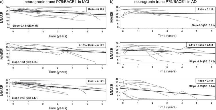 The subset of patients with MMSE at time of LP (time = 0) and/or after LP were divided into tertiles of the ratio levels to illustrate the effect of the CSF neurogranin trunc P75/BACE1 levels on evolution of MMSE over time. The panels show the low (upper panels), medium (mid panels), and high (lower panels) range of levels of CSF neurogranin trunc P75/BACE1. Separate panels were created for both MCI (a) and AD patients (b). For both the MCI and AD group, the observed MMSE was plotted versus time for each range. The thin lines represent the observed MMSE data for individual patients, (upper panels: MCI: n = 11, AD: n = 9; mid panels: MCI: n = 9, AD: n = 11; lower panels: MCI: n = 11, AD: n = 11) the thick lines symbolize the linear regression line of mean MMSE versus time. Patients where MMSE scores at time of LP were available but not post-LP, were included to delineate the tertiles. However, these individuals were not represented by a thin line, since no longitudinal data post-LP was collected in these cases.