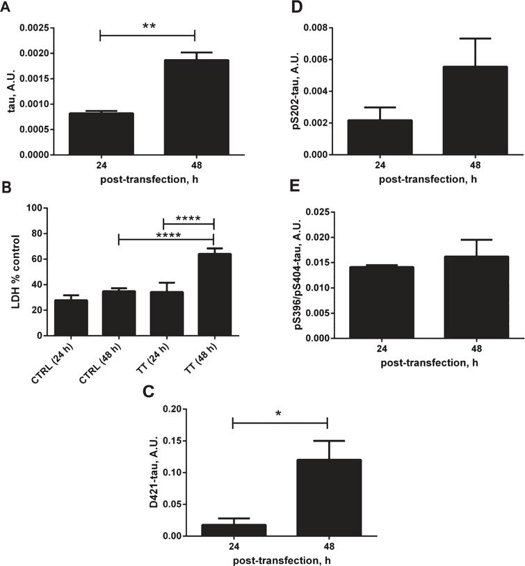 Effects of tau expression on stress-related cellular events. A) Relative amounts of total tau in DA9/CP27 ELISA in lysates from N2a cells transiently transfected with 2N4R tau cDNA for 24 and 48 h. B) Lactate dehydrogenase (LDH) release monitored in medium from N2a cells transiently transfected with 2N4R tau cDNA for 24 and 48 h, and mock transfected controls. C) Results of AlphaScreen assays for D421-caspase cleaved tau and (D, E) phospho-tau corrected to total tau levels in N2a cells expressing 2N4R tau for 24 and 48 h. Linear regression with variable slope analyses were used to calculate relative amounts of total tau from standard curves made of purified PHFs. Relative amounts of D421-caspase cleaved tau were calculated from standard curves made of N2a cell lysates transiently expressing 2N4R tau and treated with staurosporine. Amounts of total tau, D421-tau, pS202 and pS396/pS404 are expressed as mean values of six individual datasets from three independent experiments. Statistical analyses were done using one-way ANOVA with Dunnett's test or unpaired t test. A.U., arbitrary units.