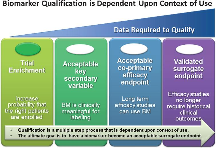 """Qualification of clinical biomarkers, regardless of target patient population, is focused on acquiring sufficient patient level anonymized data to support a given """"context-of- use"""" (COU) for clinical trial decision making. The greater the impact this clinical decision (i.e., COU) has on the patient, the greater the evidence that will be required to support a qualification recommendation by a regulatory agency. The focus of CAMD's work is to provide sufficient evidence for the use of CSF biomarkers for trial enrichment in the pre-dementia stage of AD. Note: At the time of this publication, no clinical biomarker has been qualified as a validated surrogate endpoint for any neurological indication."""