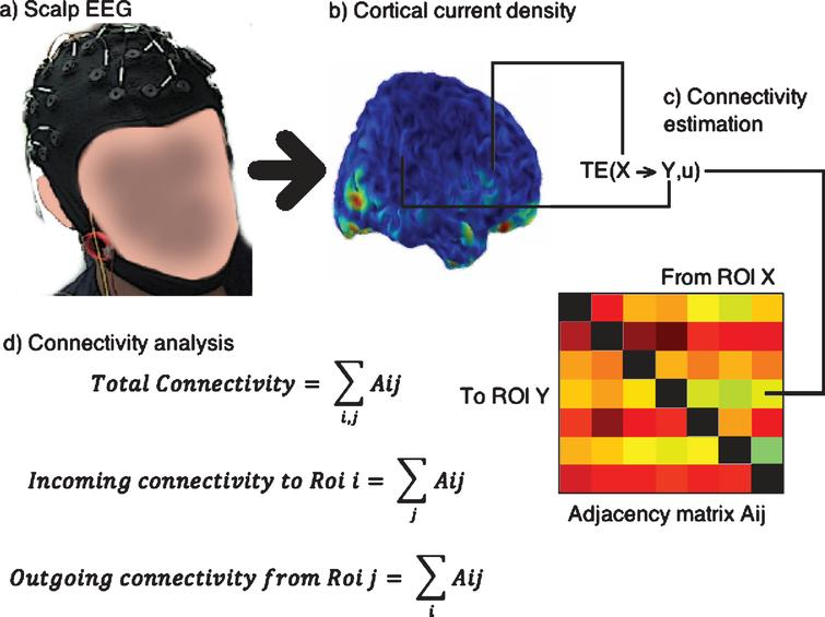 Steps followed for connectivity analysis: The scalp EEG (a) is converted to cortical current density (b). The signal for transfer entropy (TE) analysis is obtained as the average of the voxels contained in each ROI (c) and an Adjacency matrix is built, shown in colors where a warmer color indicates higher TE, and contains all the relevant connections. From the adjacency matrix the connectivity indices are obtained as sums over the rows or columns or both.