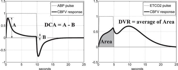 Schematic of the definition of the DCA index from the model-predicted TOI/NIRS response to a unit pulse change of the ABP input, while the ETCO2 input is kept at baseline (left panel), and of the DVR index from the model-predicted TOI/NIRS response to a unit pulse change of the ETCO2 input, while the ABP input is kept at baseline (right panel).