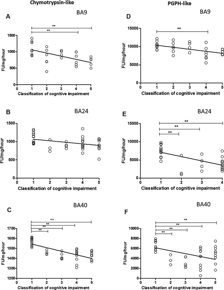 The relationship between Chymotrypsin- and PGPH-like proteasome activity measurement levels and cognitive impairment based upon MMSE classification. Chymotrypsin- and PGPH-like proteasome activity measurement levels, using fluorogenic substrate assay, predicted cognitive impairment in BA9, BA24, and BA40. Regression analysis showed Chymotrypsin-like and PGPH proteasome activity to be a significant predictor of cognitive impairment in BA9 (A and D, R2 = 0.337, beta = –0.581, [df] = 1, 29, t = –3.84, p = 0.001, R2 = 0.275, beta = –0.524, [df] = 1, 29, t = –3.315, p = 0.002), in BA24 (B and E, R2 = 0.151, beta = –0.388, [df] = 1, 38, t = –2.599, p = 0.013, R2 = 0.371, beta = –0.609, [df] = 1, 38, t = –4.733, p = 0.001), and in BA40 (C and F, R2 = 0.531, beta = –0.728, [df] = 1, 40, t = –6.72, p = 0.001, R2 = 0.217, beta = –0.466, [df] = 1, 38, t = –3.244, p = 0.002). The difference in mean Chymotrypsin-like and PGPH proteasome activity measurement levels between different cognitive impairment groups was analyzed by one-way ANOVA and the Bonferroni post hoc test, which revealed high chymotrypsin-like activity in the controls compared with moderate (p = 0.014) and severe scores (p = 0.01) (one-way ANOVA F = 5.009, d.f.  = 4 and 26, p = 0.004; Bonferroni post hoc test). There was a high PGPH-like activity in unimpaired cognition compared with the moderate groups (one-way ANOVA F = 3.616, d.f.  = 4 and 26, p = 0.004; Bonferroni post hoc test). In BA24, there was higher PGPH-like activity in unimpaired cognition group compared with MCI (p = 0.03), mild (p = 0.024), moderate (p = 0.001) and severe scores (p = 0.001) (one-way ANOVA F = 9.839, d.f.  = 4 and 35, p = 0.001; Bonferroni post hoc test). In BA40 the level of chymotrypsin-like activity was significantly higher in the controls compared with MCI (p = 0.001), mild (p = 0.001), moderate (p = 0.001) and severe scores (p = 0.001) (one-way ANOVA F = 21.845, d.f.  = 4 and 37, p = 0.001; Bonferroni post hoc test). There was a higher level of PGPH-like activity in unimpaired cognition group compared with MCI (p = 0.02), mild (p = 0.001), moderate (p = 0.001) and severe scores (p = 0.034) (one-way ANOVA F = 8.851, d.f.  = 4 and 35, p = 0.001; Bonferroni post hoc test). (**p < 0.01).