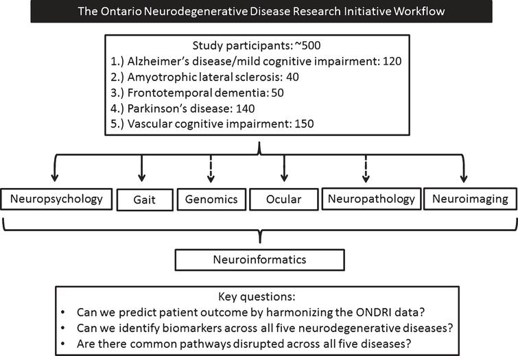 The Ontario Neurodegenerative Disease Research Initiative workflow. Dashed arrows represent single time assessments.