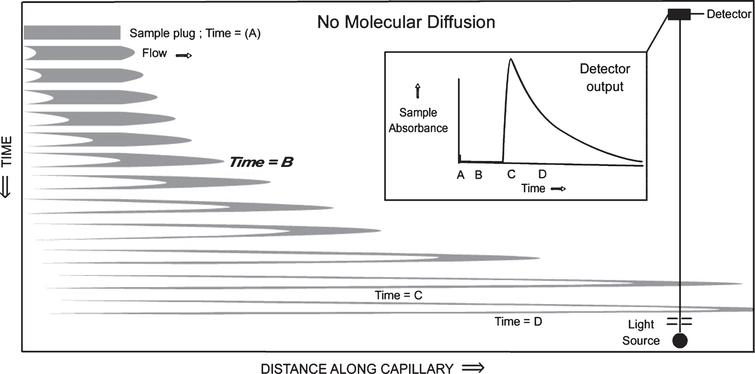 Time-lapse snapshots of an axial cross section of a sample profile travelling down a capillary, distorted by laminar flow. In this figure, it is assumed that there is no diffusion of the sample molecules outside the gray borders.