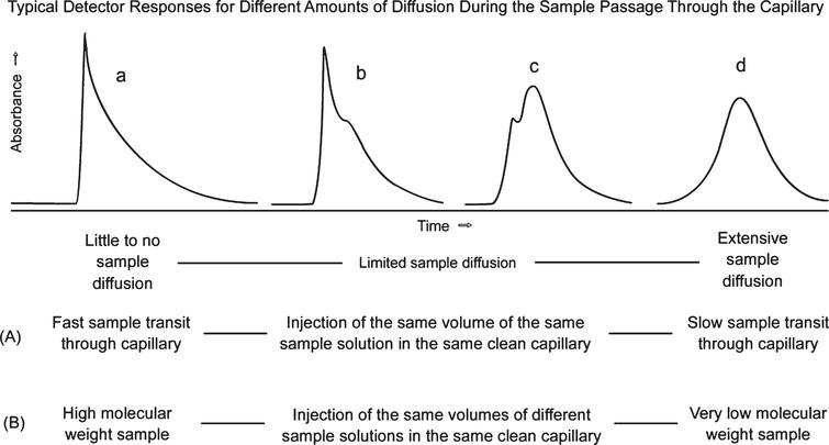 Eluting sample concentration versus time curves under different experimental circumstances: (A) effects of different mobile phase flow rates on resulting curve shapes for a single protein sample; (B) effects of sample molecule molecular weights reflected by different diffusion coefficients.