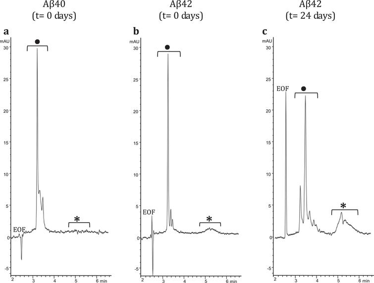 CE electropherograms: a) Aβ40 (t=0 days); b) Aβ42 (t=0 days); and c) Aβ42 (t=24 days). In the CE traces: •low MW-oligomers, *high MW-oligomers.