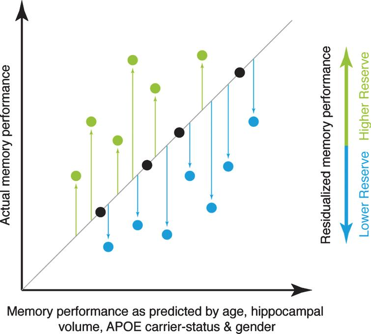 Illustration of the principle underlying the reserve measure used for the current study. The actual level of memory performance is plotted against the memory performance as predicted by age, hippocampal volume, APOE carrier-status, and gender. Individuals whose actual memory performance level is higher than predicted (green circles) have high reserve, whereas individuals whose actual memory performance is lower than predicted (blue circles) have low reserve in the memory domain.