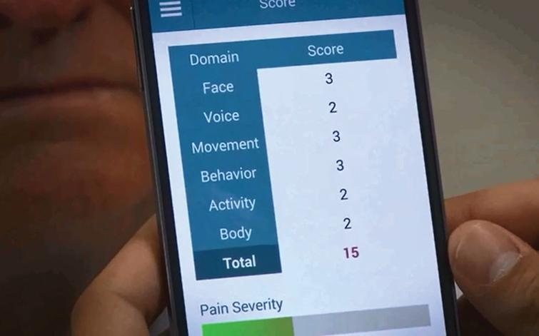 Total score screen of the ePAT App depicting to pain intensity score.