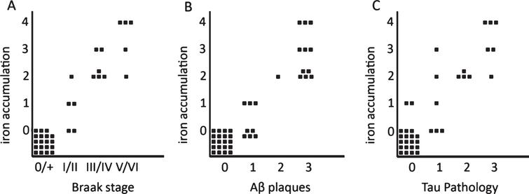 Semi-quantitative correlation between iron accumulation and Braak stage (A), Aβ plaques (B), and tau pathology (C). Iron accumulation: 0: no iron accumulation, 1: low, 2: intermediate and 3: high iron accumulation in plaques and microglia, 4: high iron accumulation in plaques and microglia and a band shaped iron/PLP increase in the middle cortical layers. For grading definitions, see Methods. All three correlations were statistically significant (p < 0.001).