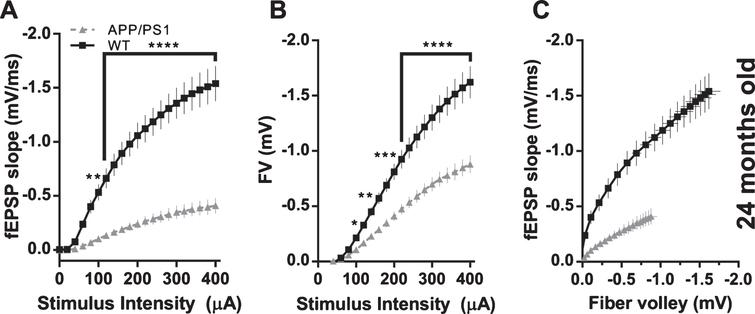 Effect of APP/PS1 mutations on basal synaptic transmission in 24-month-old mice. A) fEPSP slopes versus stimulus intensity (WT n=33 slices from 3 animals; APP/PS1 n=41 slices from 4 animals; 2-way ANOVA; genotype: F(1, 1512)=778.5, p<0.0001; stimulus amplitude: F(20, 1512)=33.96, p<0.0001; interaction: F(20, 1512)=11.26, p<0.0001; asterisks indicate results of Bonferroni's multiple comparisons test). B) Fiber volley amplitudes versus stimulus intensity (WT n=33 slices from 3 animals; APP/PS1 n=41 slices from 4 animals; 2-way ANOVA; genotype: F(1, 1512)=319.4, p<0.0001; stimulus amplitude: F(20, 1512)=93.74, p<0.0001; interaction: F(20, 1512)=8.608, p<0.0001; asterisks indicate results of Bonferroni's multiple comparisons test). C) fEPSP slopes versus fiber volley amplitudes.