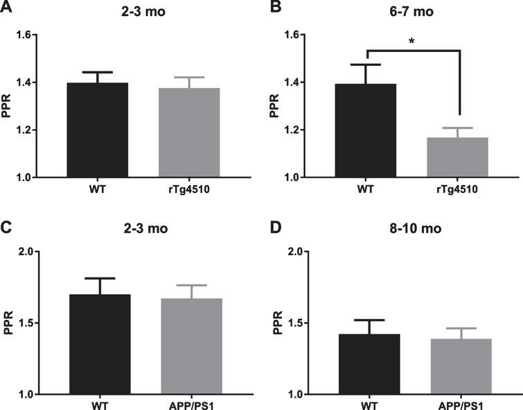 Short term facilitation in rTg4510 and APP/PS1 mice. A) 2-3-month-old rTg4510 mice do not show a deficit in paired pulse facilitation (WT: n=17 slices from 5 animals, rTg4510: n=17 slices from 6 animals; two-tailed t-test p=0.7193). B) 6-7-month-old rTg4510 mice show a deficit in paired pulse facilitation (WT n=17 slices from 6 animals, rTg4510 n=17 slices from 5 animals; two-tailed t-test p=0.0177). C) 2-3-month-old APP/PS1 mice do not show a deficit in paired pulse facilitation (WT n=15 slices from 3 animals, APP/PS1 n=13 slices from 5 animals; two-tailed t-test p=0.8550). D) 8–10-month-old APP/PS1 mice do not show a deficit in paired pulse facilitation (WT n=17 slices from 6 animals, APP/PS1 n=17 slices from 5 animals; two-tailed t-test p=0.7936).