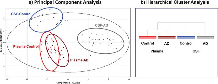 Scores from Principal Component Analysis (PCA) decomposition (a) and hierarchical clustering analysis (b) of mass spectra of albumin post-translational modifications (PTMs) to compare within- and between-group variation datasets.