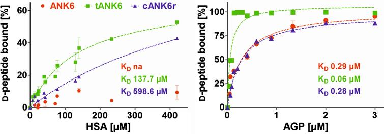 Binding to the plasma proteins HSA and AGP. ANK6's (red circles), tANK6's (green squares), and cANK6r's (blue triangles) binding to the plasma proteins human serum albumin (HSA) and to α1 acid glycoprotein (AGP) was analyzed. The D-peptides were applied at 5μM while HSA and AGP concentrations were adjusted as follows: HSA 7.4μM to 420μM, AGP 0.04μM to 3μM. The unbound amount of ANK6, tANK6, and cANK6r (in %) to HSA or AGP respectively was plotted against the D-peptides' concentrations. Datasets were fitted by nonlinear regression to determine the KD.