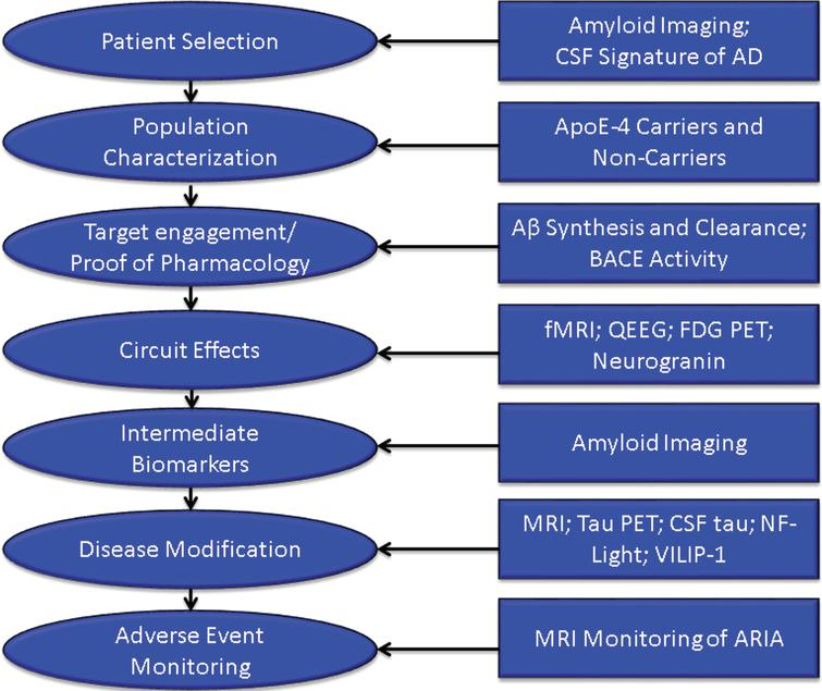 Roles of biomarkers in Phase II of drug development (BACE inhibition is included as an example of one type of target engagement biomarker; each drug mechanism will have a corresponding target engagement/proof of pharmacology biomarker), CSF, cerebrospinal fluid; AD, Alzheimer's disease; fMRI, functional magnetic resonance imaging; QEEG, quantitative electroencephalography; FDG PET, fluorodeoxyglucose positron emission tomography; NF-light, neurofilament light chain protein; ARIA, amyloid-related imaging abnormalities.
