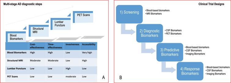 Evolving spectrum of biomarkers and modalities. A) The ideal biomarker should be minimally-invasive, unexpansive, practical, rapid and reliable with low level of expertise required. Therefore, in the clinical-setting, biomarkers should be assessed in a multi-stage diagnostic workout carried-out along four steps (blood biomarkers, structural MRI, lumbar puncture, PET scans) according to the overall balance among the following factors: cost-effectiveness, time-effectiveness, invasiveness and accessibility. B) Biomarkers represent one strategy to tailor therapy. The idealistic markers for ND would enable their implementation in screening, diagnosis, progression of the disease, and monitoring of the response to therapy. Therefore, in clinical trials, biomarkers can be used for several purposes: 1) to identify people eligible for the trial, i.e., those considered at high risk for ND (screening biomarkers); 2) to guide clinical diagnosis (diagnostic markers); 3) to optimize treatment decisions, providing information on the likelihood of response to a given drug (predictive biomarkers); 4) to detect and quantify the response rate to treatment (response markers). MRI, magnetic resonance imaging; PET, positron emission tomography; ND, neurodegenerative diseases.