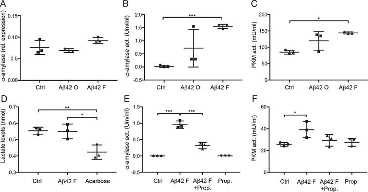 Unchanged gene expression but increased activity of α-amylase and glycolytic changes in cultured astrocytes after Aβ42 stimulation. Column scatter plot in (A) shows relative expression of α-amylase normalized against values of housekeeping genes ribosomal protein L13A (RPL13A) and hydroxymethylbilane synthase (HMBS) in HA stimulated with control (Ctrl), 10 μM Aβ oligomers (Aβ42 O), and 10 μM Aβ42 fibrils (Aβ42 F). No significant difference was seen between the stimulations. Column scatter plot in (B) shows the change in α-amylase activity seen in stimulated HA cells. Aβ42 F stimulated HA showed significantly higher α-amylase activity compared with Ctrl. Column scatter plot in (C) shows the change in pyruvate kinase (PKM) activity seen in stimulated HA cells. Aβ42 F significantly increased PKM activity in HA stimulated with Aβ42 F compared with Ctrl. Column scatter plot in (D) shows the unaltered lactate levels in cell culture medium after stimulation with Aβ42 F, but reduced lactate levels after stimulation with the negative control 5 μM acarbose. Column scatter plot in (E) shows the inhibiting impact of 1 μM propranolol (Prop.) on Aβ42 F induced α-amylase activity, were propranolol counteracted the Aβ42 F- induced α-amylase activity. Column scatter plot in (F) shows the PKM activity in HA after stimulation with propranolol and Aβ42 F. The experiments were performed independently three times with two replicates. Data was analyzed using one-way ANOVA with Tukey post-test and presented as mean±SD. *p < 0.05, **p < 0.01, ***p < 0.001.