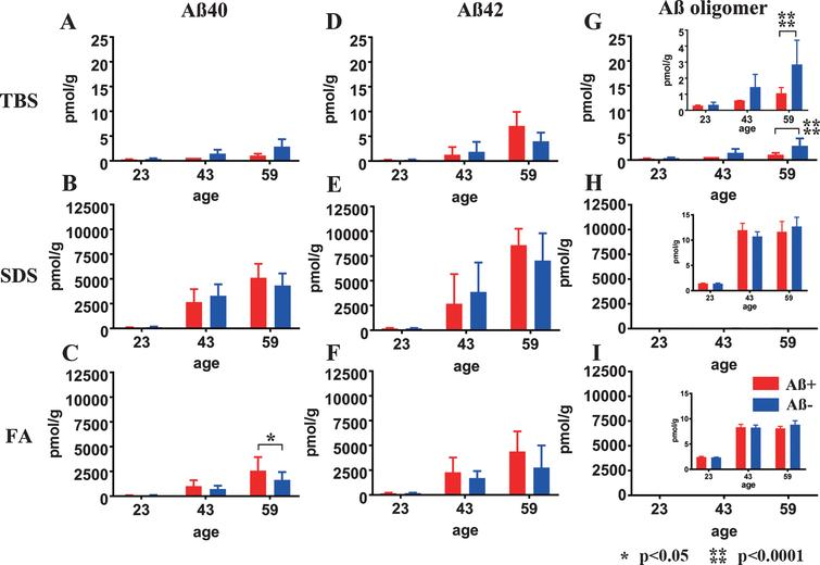 Longitudinal change in Aβ40, Aβ42, and AβOs in TBS, SDS, and FA fractions from Aβ+ or Aβ– treated mouse brains. Amounts of Aβx-40 (A–C), Aβx-42 (D–F), and AβOs (G–I) in TBS, SDS, and FA fractions of Aβ+ (red) and Aβ– (blue) immunized mouse brains measured using ELISA at 23, 43, and 59 weeks old. There were no significant differences in the levels of Aβx-40 (A, B) and Aβx-42 (D–F) between Aβ+ and Aβ– treated groups at any time points or in any fractions, except for the Aβx-40 in the FA fraction at 59 weeks old (C: *p<0.05). Significant suppression of AβOs in TBS soluble fractions was revealed in Aβ+ treated mice compared with Aβ– treated mice (G and enlarged illustration, ****p<0.0001). Amounts of AβOs in SDS and FA fractions were very low compared with Aβ40 and Aβ42 in the same fraction (H, I). Mice at 23 weeks (n=9 for Aβ+, n=11 for Aβ–), 43 weeks (n=7 for Aβ+, n=6 for Aβ–), and 59 weeks (n=6 for Aβ+, n=7 for Aβ–) were measured by ELISA.