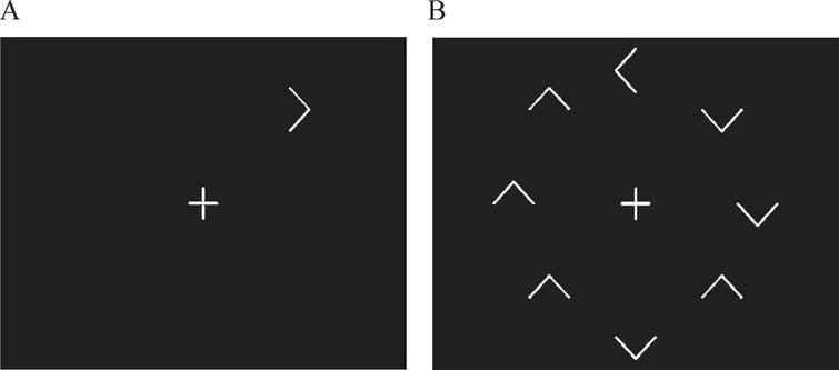 Representation of the target alone (distracter absent) and target with distractors (distracter present) visual search conditions.