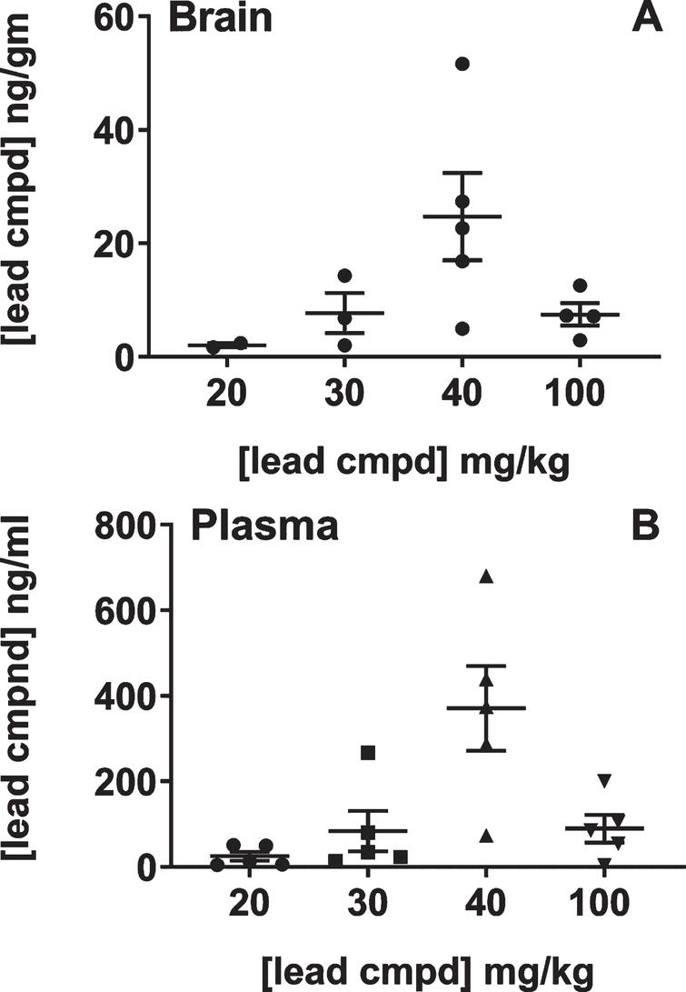 Analysis of brain and plasma levels of lead compound with respect to formulated doses in feed. Groups of male C57BL/6 mice (n = 5) were treated with feed formulated to provide the doses shown on the plot for seven days. Mice were individually caged on the last two days in order to determine the amount of feed each mouse consumed (Murigenics, Vallejo, CA) prior to analyzing compound levels in the brain (A) and plasma (B) by LC-MS/MS (Quintara Discovery, Hayward, CA). Values below quantifiable levels were not included in the groups treated with 20, 30, or 100 mg/kg doses.