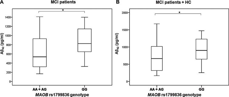 Levels of Aβ42 in A) MCI patients and B) MCI patients and HC with different MAO-B rs1799836 genotype. *p < 0.05.