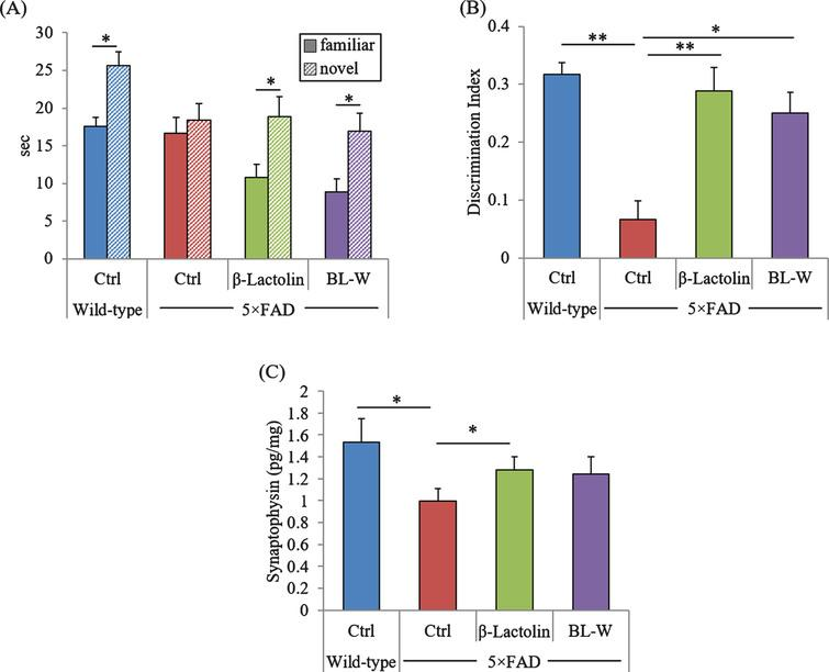 Effects of β-lactolin on memory function in 5×FAD mice. Transgenic 5×FAD and wild-type male mice aged 2.5 months were fed a diet with or without 0.05% w/w β-lactolin or 5% w/w β-lactolin-rich whey enzymatic digestion (BL-W) for 3.5 months. Mice aged 6 months were subjected to the novel object recognition test to evaluate object recognition memory. A, B) The time spent exploring novel and familiar objects during 5 min of re-exploration (A) and the discrimination index [(time spent with object A – time spent with object B) / total time exploring both objects] (B) were measured. C) The levels of synaptophysin in the frontal cortex. Data are presented as means±SEM (sample size: wild-type mice, 10; control transgenic mice, 10; transgenic mice fed with β-lactolin, 11; or transgenic mice fed with BL-W, 10). p-values shown in the graph were calculated by student t-test or one-way ANOVA followed by the Tukey–Kramer test. *p<0.05, **p<0.01.