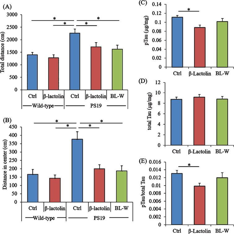 Effects of β-lactolin on memory function and tau accumulation in PS19 mice. Transgenic PS19 and wild-type male mice aged 3 months were fed a diet with or without 0.05% w/w β-lactolin or 5% w/w β-lactolin-rich whey enzymatic digestion (BL-W) for 6 months. Mice aged 9 months were subjected to the open field test to evaluate behavioral abnormality. A, B) The total distances in the open field (A) and in the center of the open field (B). C, D) The levels of phosphorylated tau (pTau, C) and total tau (D) in the cortex. E) The ratio of pTau to total tau. Data are presented as means±SEM (sample size: wild-type mice, 12; control transgenic mice, 11; transgenic mice fed with β-lactolin, 11; or transgenic mice fed with BL-W, 11). p-values shown in the graph were calculated by one-way ANOVA followed by the Tukey–Kramer test. *p<0.05.