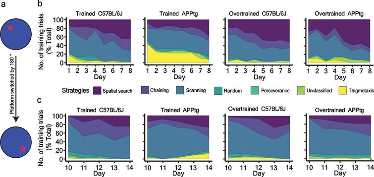 Percentage-stacked-area plot of different strategies adopted by different groups of 7-month-old mice. a) Schema showing the platform position during the WM task and WM reversal task. b) and c) strategies adopted by mice as a function of training trials during the WM task and WM reversal task.