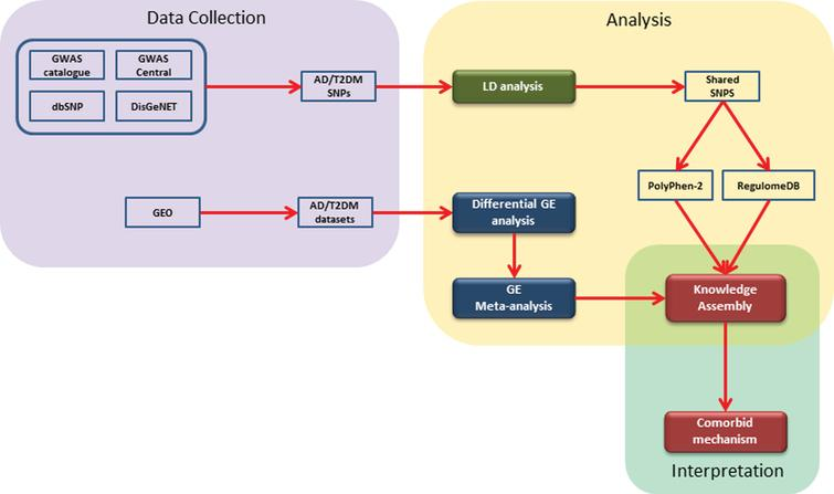 A schematic representation of the implemented workflow: The steps involved are 1) collection of genomic and gene expression data from open and freely accessible databases; 2) analysis of data using available tools and packages; and 3) construction of literature derived knowledge assembly and comorbid interpretation.