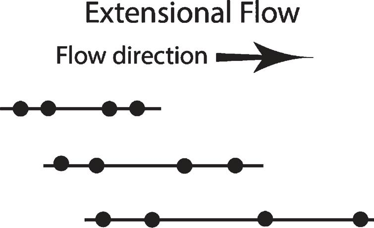 Lines representing protein under extensional flow, with two sets of points, leading and lagging. The line is unevenly stretched, with the distance between the leading set of points accelerating faster than the distance between the lagging set of points. The molecule is moving in the direction of flow. This is the type of extensional strain found on the left side of Fig. 2 below between A and B objects, as well as between B and C.