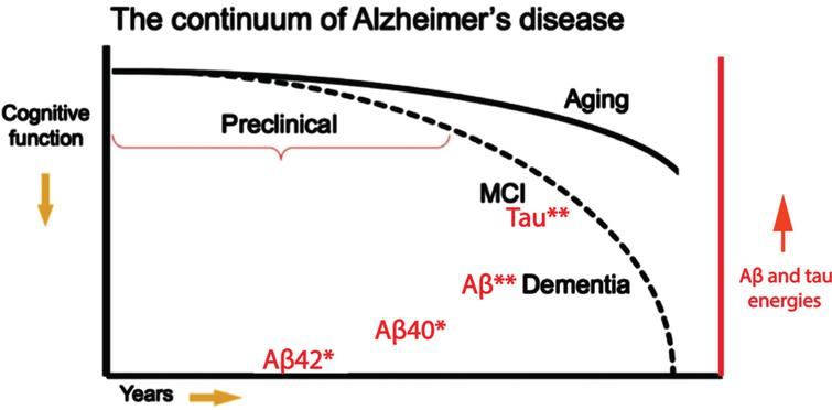 Deterioration of cognitive function in AD with time correlated with postulated corresponding increases in flow-stress energized Aβ and tau molecules contained in brain CSF. Both of these are postulated to be smooth transitions. The dashed line is that for AD patients and the solid line for healthy individuals. Asterisks indicate the degree of flow-stress energy and aggregation in the amyloid monomers. Note that this diagram represents a hypothetical model for the pathological-clinical continuum of AD but does not imply that all individuals with biomarker evidence of AD-pathophysiological process will progress to the clinical phases of the illness. Aβ42* represents cortex plaque formation. Aβ40* represents low energy oligomers and CAA formation. Aβ** represents higher energy oligomer seed precursors. Tau** represents higher energy tau oligomer seed precursors. Figure modified (in red) from [53] with permission.
