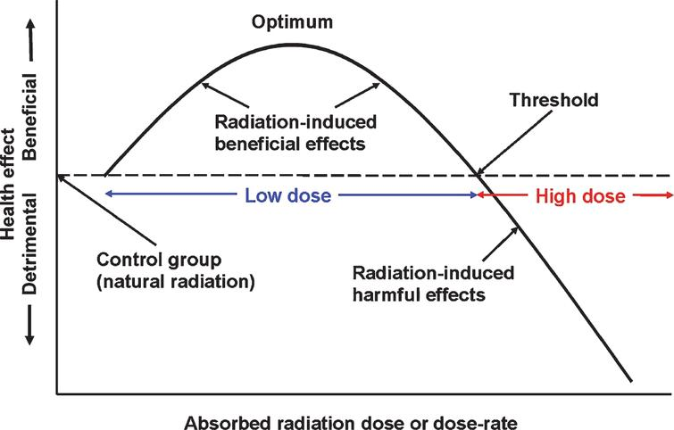 The biphasic dose-response model and the definition of a low dose of radiation. Reprinted with permission from Cuttler JM [20], © 2020 SAGE Publications and adapted for this publication. Reference [35], Fig. 1 suggests that optimal radiation-induced stimulation of the protection systems occurs when the dose is between 0.1 to 0.5Gy. The threshold for adverse effects due to an acute exposure (dose fraction) of the brain is about 3Gy.