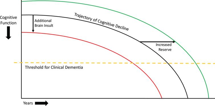 Model of cognitive decline. The black line represents the trajectory of cognitive decline due to neurodegenerative disease. The yellow dashed line represents the threshold for clinical dementia, i.e., the inability to manage activities of daily living. The red line represents the impact of additional injuries to the brain, which can decrease brain reserve and cause a leftward shift of the trajectory of cognitive decline, leading patients to cross the threshold for clinical dementia earlier. The green line represents the effect of increased cognitive and brain reserve, which can cause a rightward shift in the trajectory of cognitive decline, leading patients to cross the threshold for clinical dementia later. These principles involving theoretical shifts in the trajectory of cognitive decline also apply to adults without neurodegenerative disease, though the initial downward trajectory is much less steep.