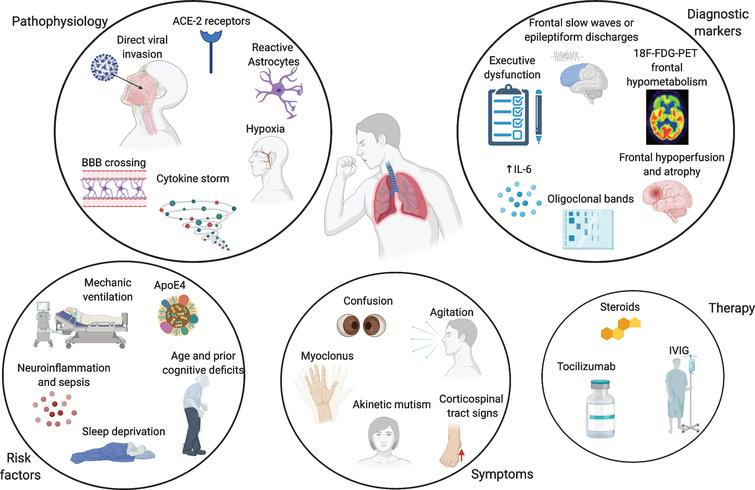 Overview of the pathophysiological mechanisms, risk factors, symptoms, and biomarkers of cognitive impairment and therapy in COVID-19 patients. Made in ©BioRender - biorender.com.