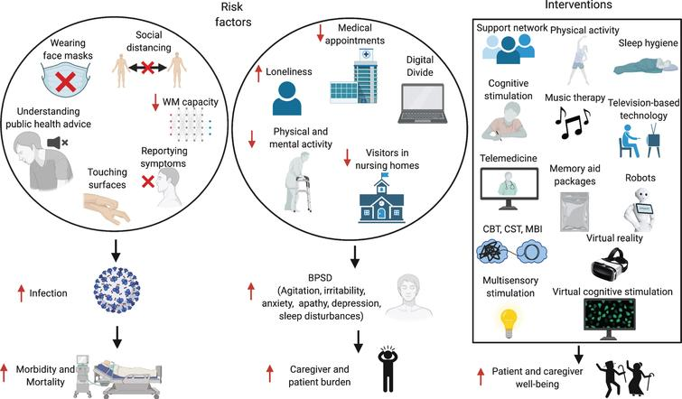 Risk factors for increased infection rates and BPSD in patients with dementia, and possible interventions. WM, working memory; BPSD, behavioral and psychological symptoms of dementia; CBT, Cognitive Behavioral Therapy; CST, Cognitive Stimulation Therapy; MBI, Mindfulness-Based Intervention. Made in ©BioRender - biorender.com.