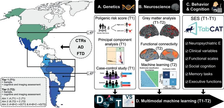 The ReDLat initiative. Systematic comparisons between LAC and US samples of AD and FTD via a novel, multimodal approach. The multimodal patterns will be assessed with different measures of (A) genetic risk (Aim 1), (B) imaging markers boosted by computational approaches, and (C) harmonized and novel measures of cognitive profiles and SES/SDH (Aim 2). These data sources will be (D) integrated and compared across countries through machine learning (Aim 3) to unveil the main commonalities and differences between US and LAC samples. Tier 1 (T1): Larger study (Aim 1 &3). Tier 2 (T2, smaller study with deep neurocognitive investigation (Aim 2 & 3). D, data; Q&F, quality & feature extraction; N, normalization; T, test; VS, visualization.