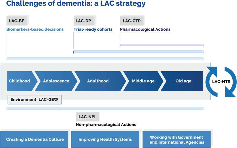 Knowledge-to-action framework. The diagram captures challenges posed by dementia and the related mapping of key actions. Such actions may be linked to specific working groups that have been included in the framework. This approach comprises a biomarker framework (LAC-BF), genetics and epidemiology workgroup (LAC-GEW), dementia platform (LAC-DP), clinical trial program (LAC-CTP), nonpharmacological interventions (LAC-NPI), and an LAC network for translational research (LAC-NTR). Reproduced with authorization from [1].