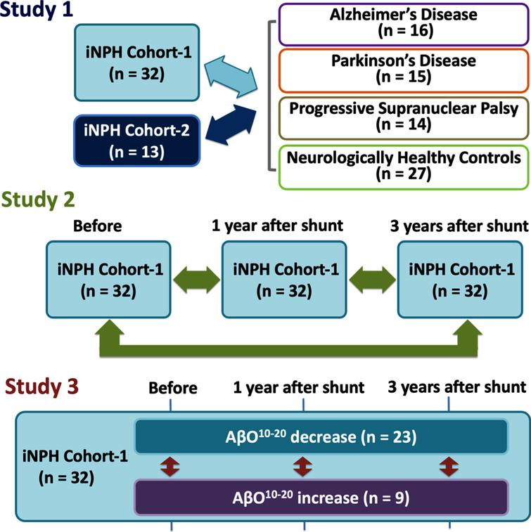 Study designs. First, we compared iNPH cohorts with comparison cohorts: AD, PD, PSP, and HCs (Study 1). Second, we compared iNPH cohort-1's measurement before and after CSF shunting (Study 2). Third, we subdivided iNPH cohort-1 members into AβO10–20 decrease or increase subgroups and compared them in terms of biomarkers and neurological statuses at before and 1 and 3 years after CSF shunting (Study 3). AD, Alzheimer's disease; AβO10–20, amyloid-β oligomer10–20; CSF, cerebrospinal fluid; iNPH, idiopathic normal pressure hydrocephalus; HCs, healthy controls; PD, Parkinson's disease; PSP, progressive supranuclear palsy.