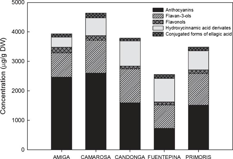 Comparative of concentrations (μg/g DW) of total phenolic compounds (anthocyanins, flavan-3-ols, flavonols, hydroxycinnamic acid derivates and conjugated forms of ellagic acid) in different strawberry cultivars. Data are an average of years (2010 and 2011) and stages of ripening (nearly ripe and ripe).