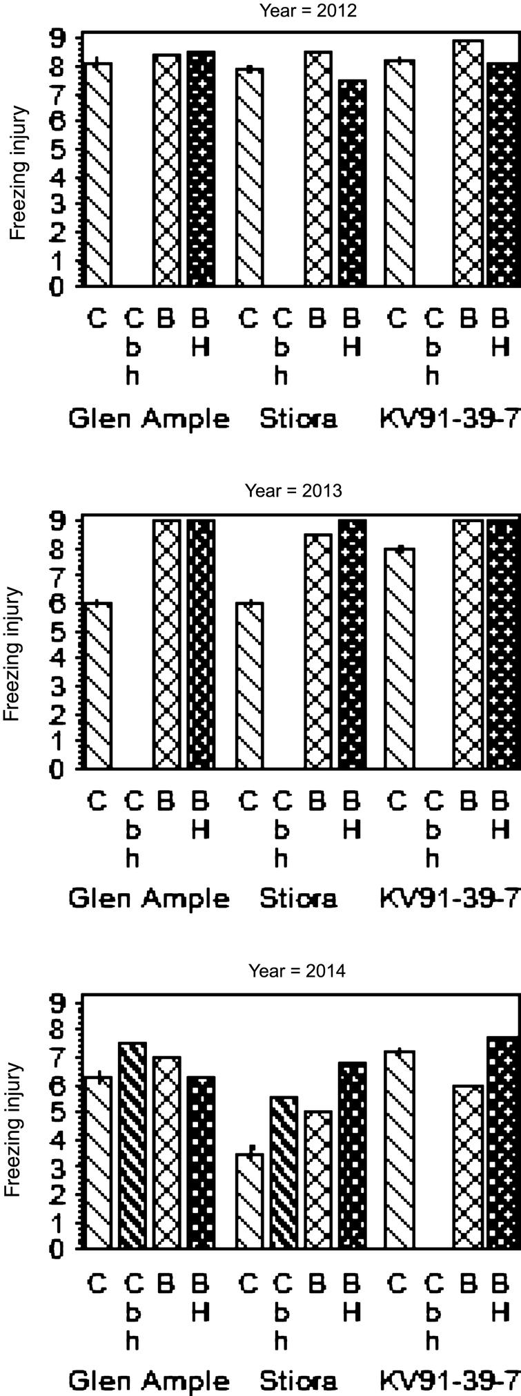 The effect of low-temperature stress avoidance treatments on freezing injury (rated 0–9 where 0 is dead buds and 9 fresh buds), in cane buds of three raspberry cultivars in three years in mid-Norway. C = erect canes the whole year (Control = treatment D); Cbh = erect canes April–October 2014 at bent and heated plots; B = bent and covered plots with erect canes May–October; BH = bent and heated plots October–May. Cbh is similar to BH except that canes were raised into erect position approx. one month earlier than for BH. Bars on the top of the left column of each cultivar indicate standard error within the cultivar.