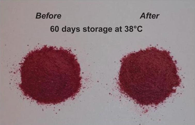Encapsulated cherry juice powder (aw=0.10) before and after 60 days storage at 38°C –left side: before storage; right side: after storage.