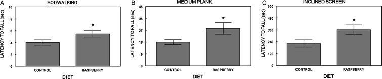 Psychomotor performance: The 2% raspberry diet group had longer latencies to fall (mean±SEM: secs) on the rod walk (A), medium plank walk (B) and the inclined screen (C) compared to the control group (*=p≤0.05, one-way ANOVA).