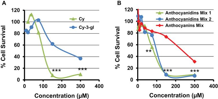 Antiproliferative activity of cyanidin and cyanidin-3-glucoside by MTT assay against human lung A549 cells (A). Panel B shows the effect of native mixture of BB anthocyanidins (Cy, Mv, Pe, Pt and Dp) (Anthocyanidins Mix 1), and their equimolar mixture on cell viability of human lung cancer cells (Anthocyanidins Mix 2). The effect of anthocyanidins was compared to the equimolar anthocyanins mixture (Anthocyanins Mix). Data are expressed as percentage of untreated cells. Standard deviation of (5–7%) is not shown for clarity.
